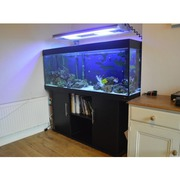 Marine Aquarium, , Jewel Rio 400 liters/ 80 gallon,  5 foot long with cab